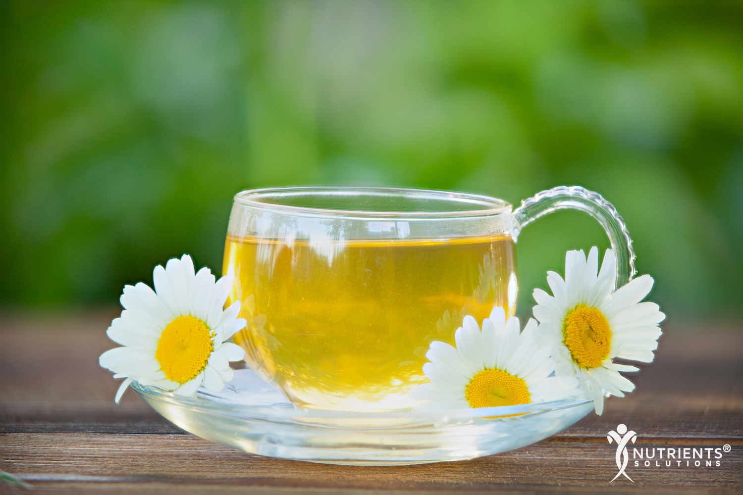 The Health Benefits of Soothing Chamomile