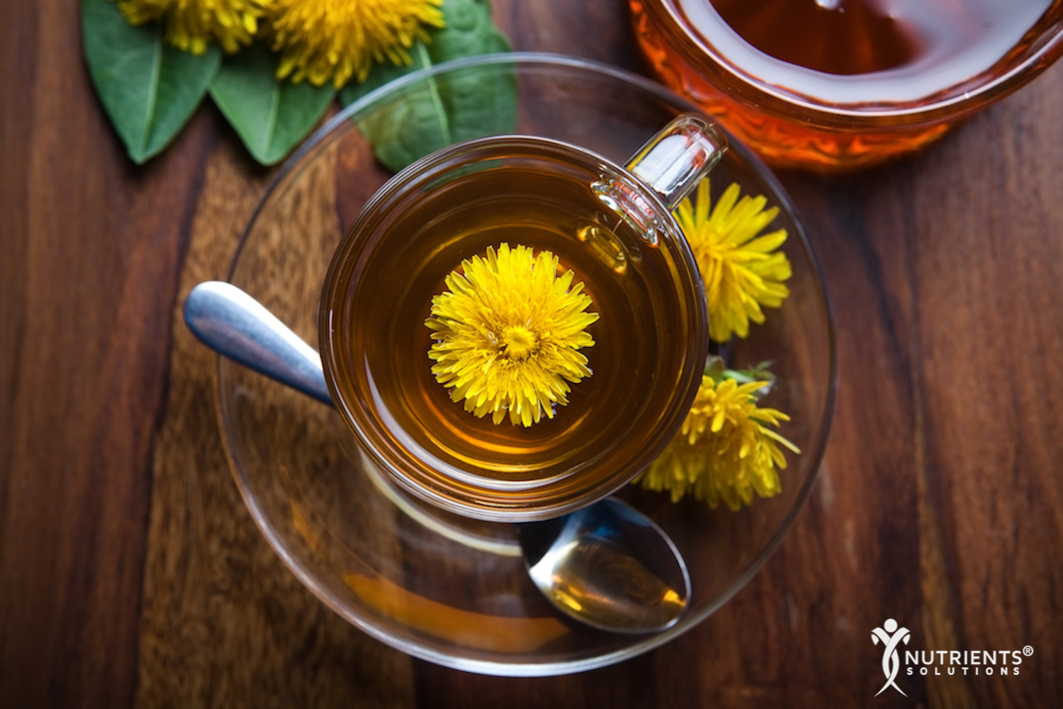 Dandelion Root - A Common Weed That Promotes Good Health