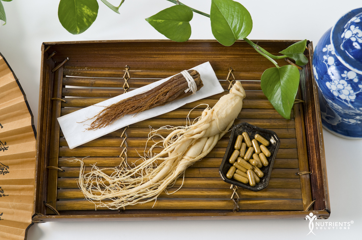 The Multitude of Health Benefits Associated with Ginseng