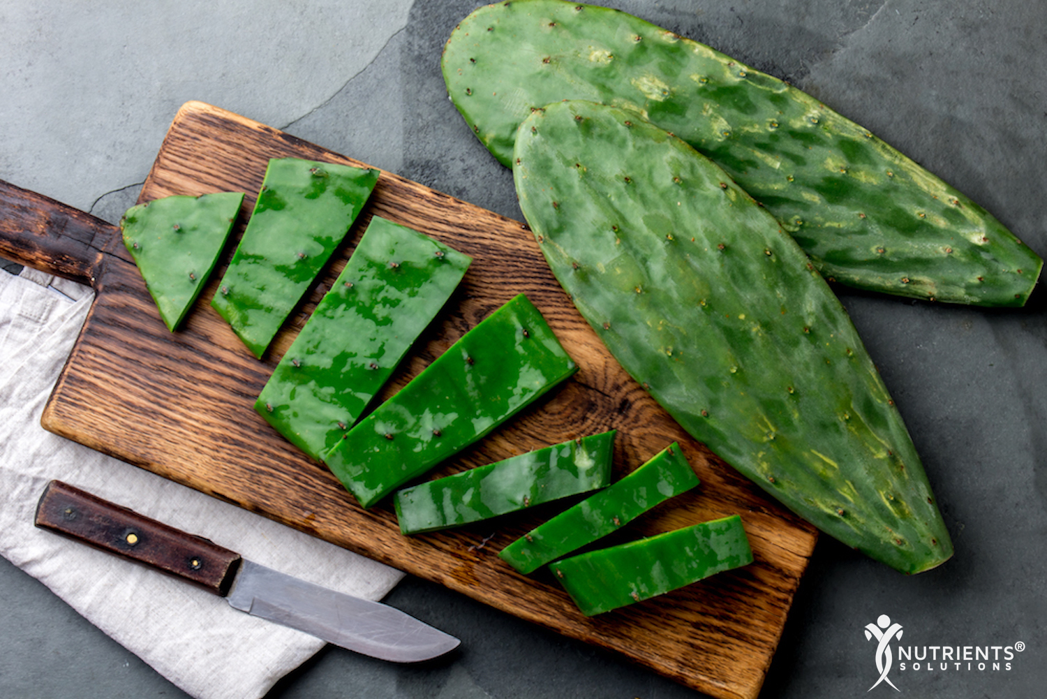 Nopal Opuntia Healing Properties Used For Centuries