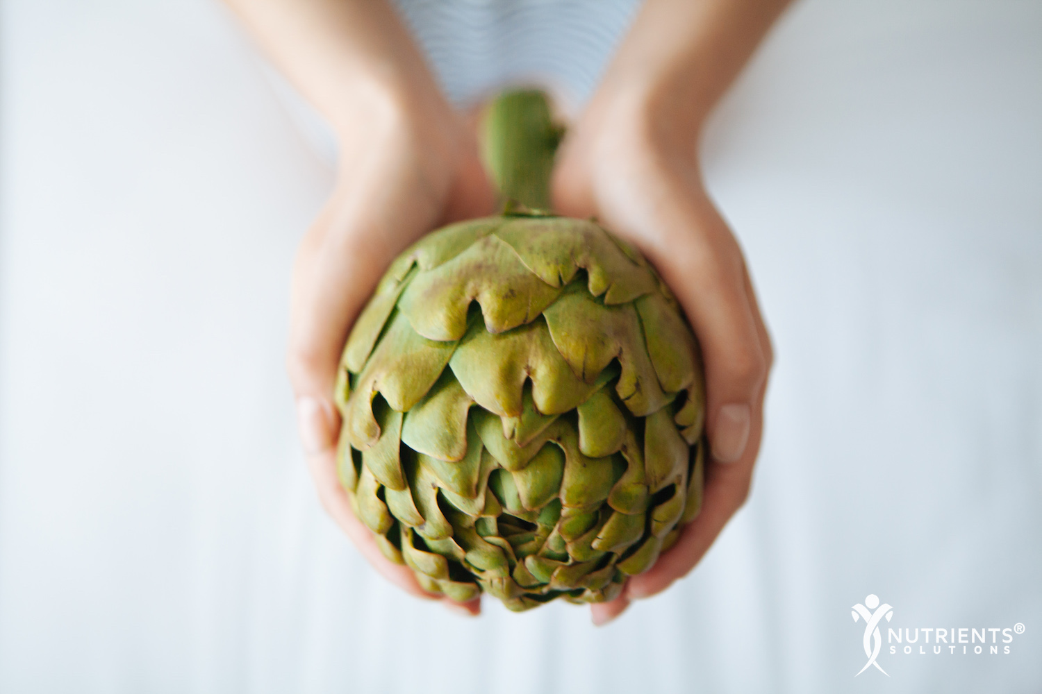 7 Health Benefits of Artichokes and Artichoke Leaf Extract
