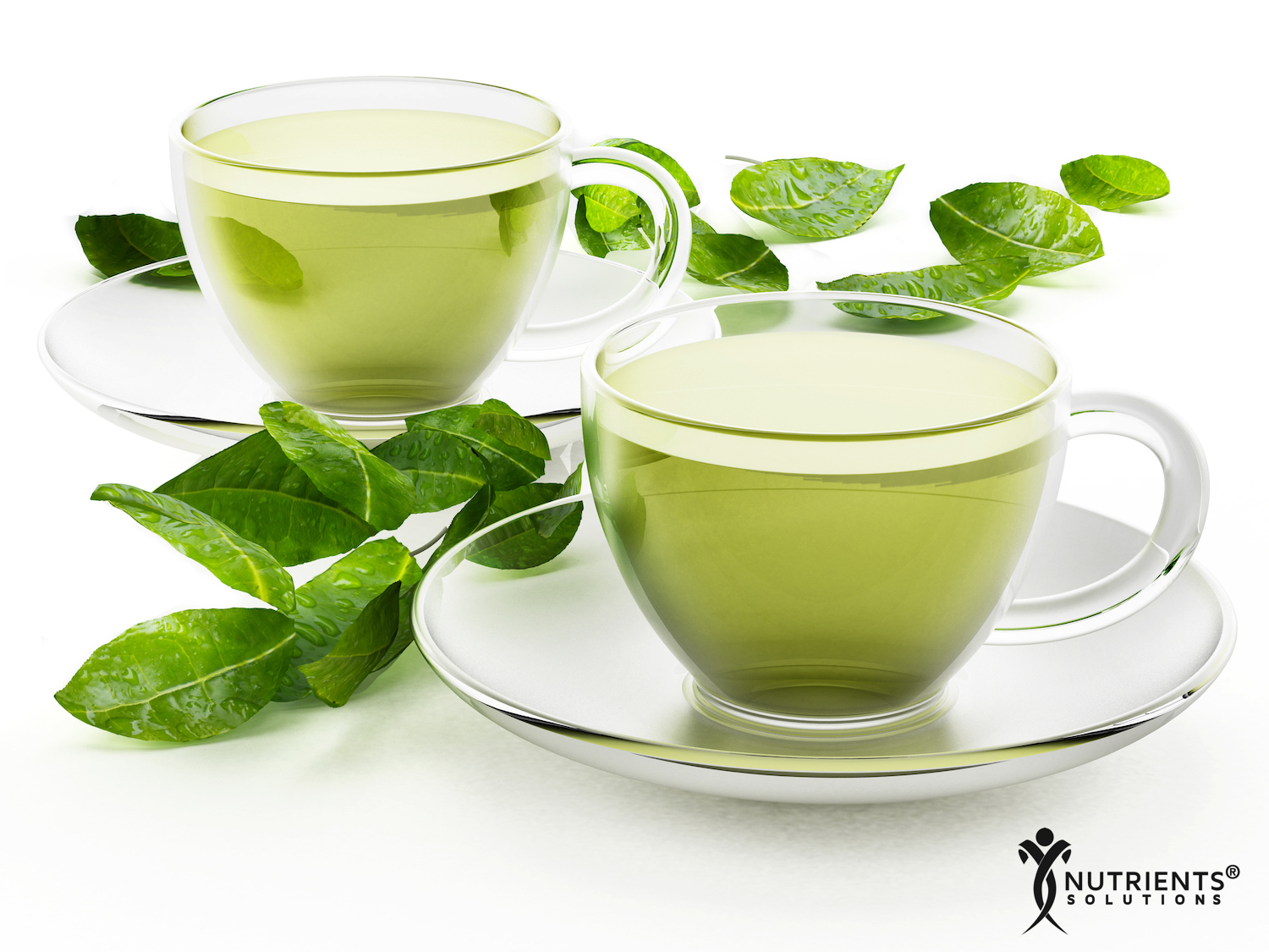 The Many Amazing Health Benefits of Green Tea