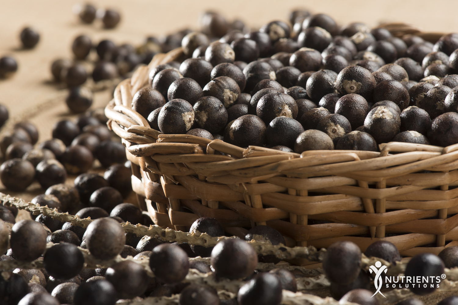 6 Reasons Acai Berries are a Superfood
